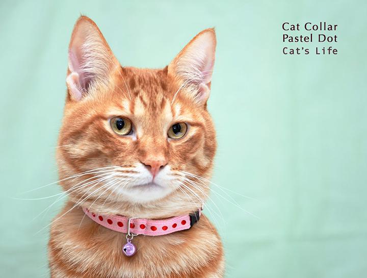 猫の暮らし キャットカラー パステルドット 首輪