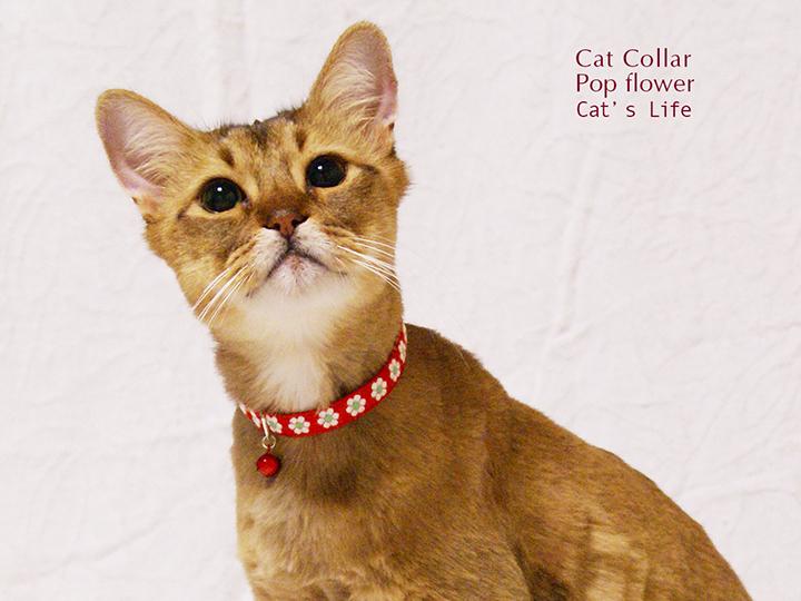 猫の暮らし キャットカラー ポップフラワー 首輪