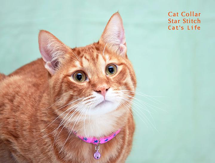 猫の暮らし キャットカラー スターステッチ 首輪