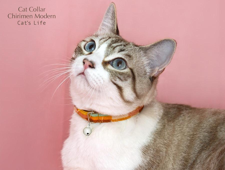 猫の暮らし キャットカラーちりめんモダン 首輪