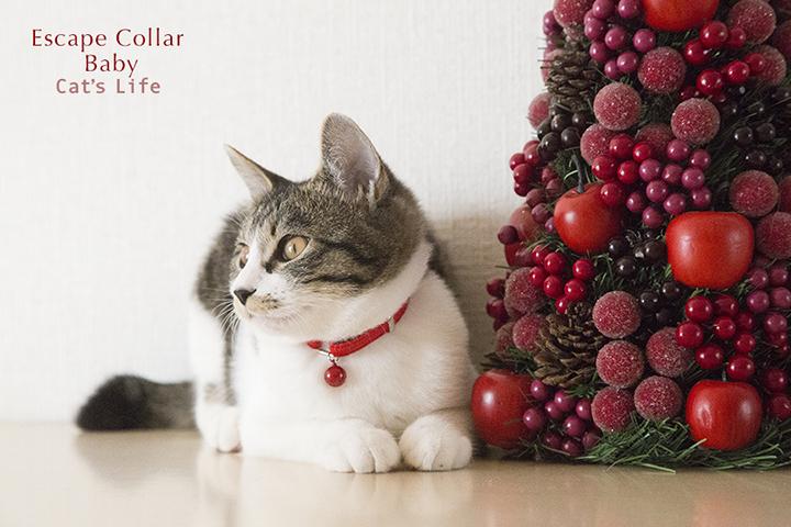 猫の暮らし エスケープカラー Babyサイズ
