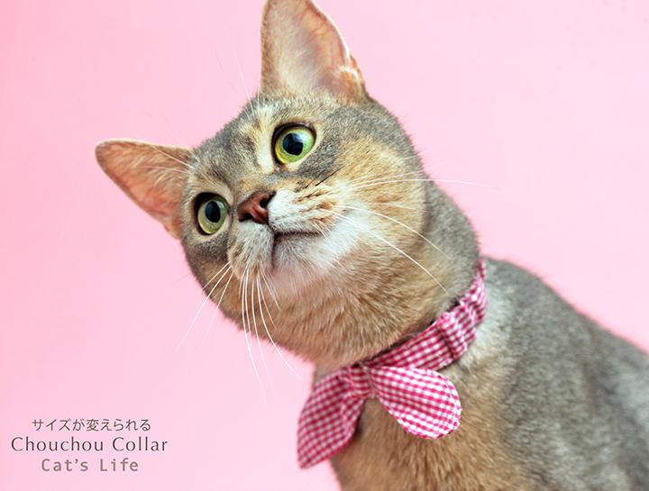 猫の暮らし サイズが変えられるシュシュカラー 首輪