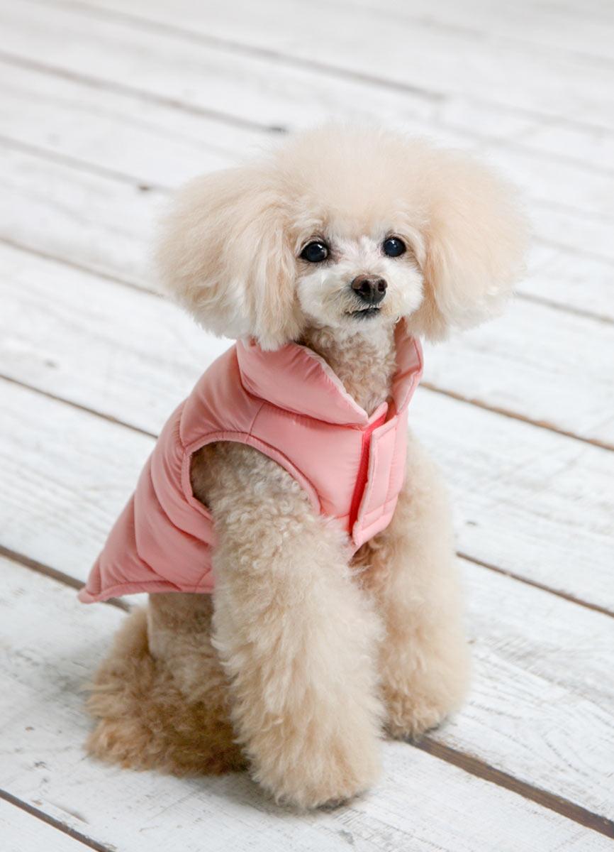 犬と生活 エアライトダウン(ハーネス対応)【犬服 冬服 小型犬 中型犬】