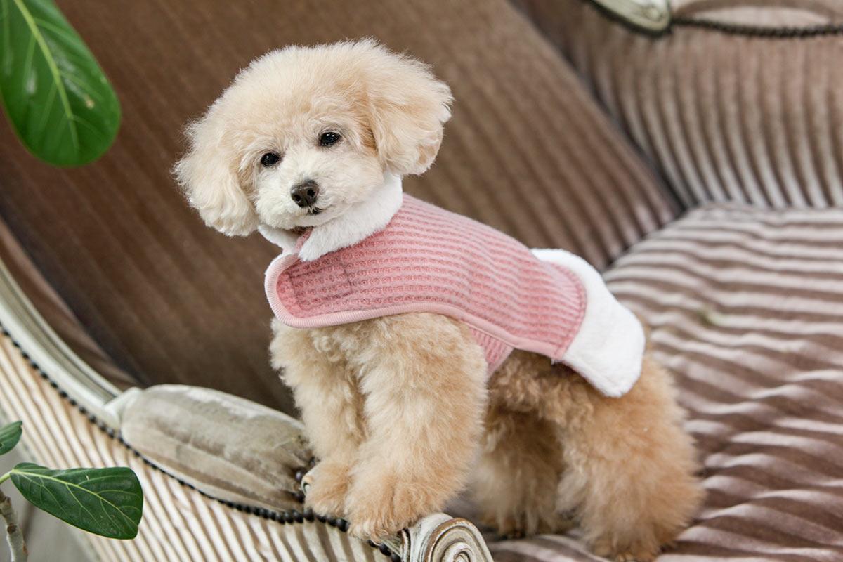 犬と生活 ウォームイージーコート【犬服 冬服 小型犬 中型犬】