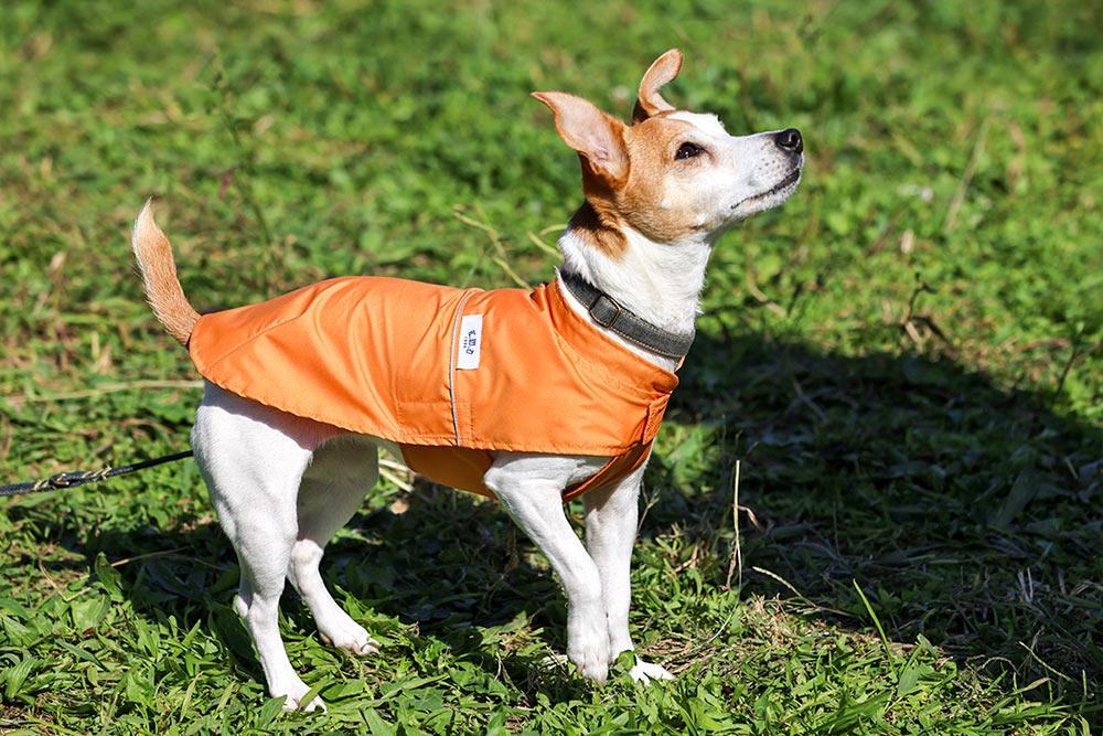 犬と生活 花粉ガードコート【犬服 冬服 小型犬 中型犬】