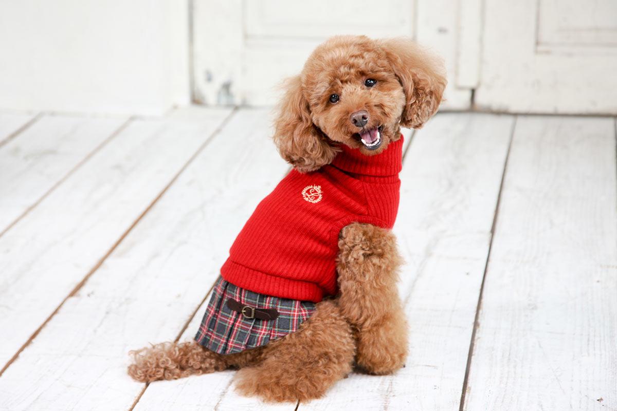 犬と生活 チェックスカート 【犬服 冬服 小型犬】