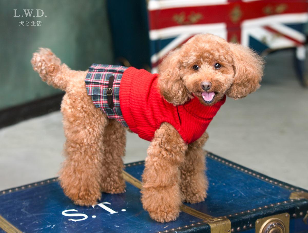 犬と生活 チェックスカート 【犬服 秋冬服 小型犬】