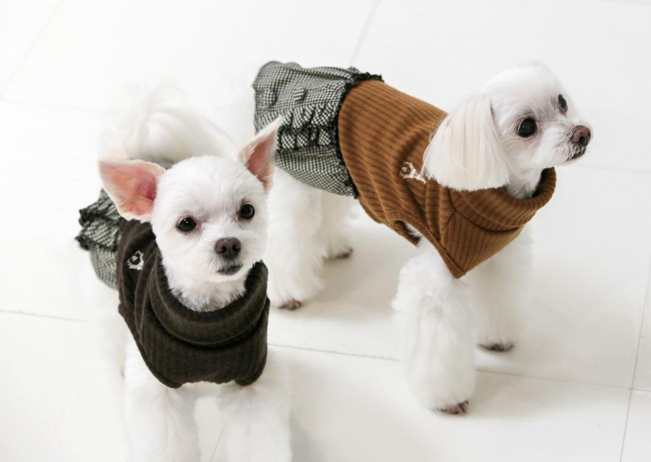 犬と生活 ショコラワンピース 【犬服 秋冬服 小型犬】