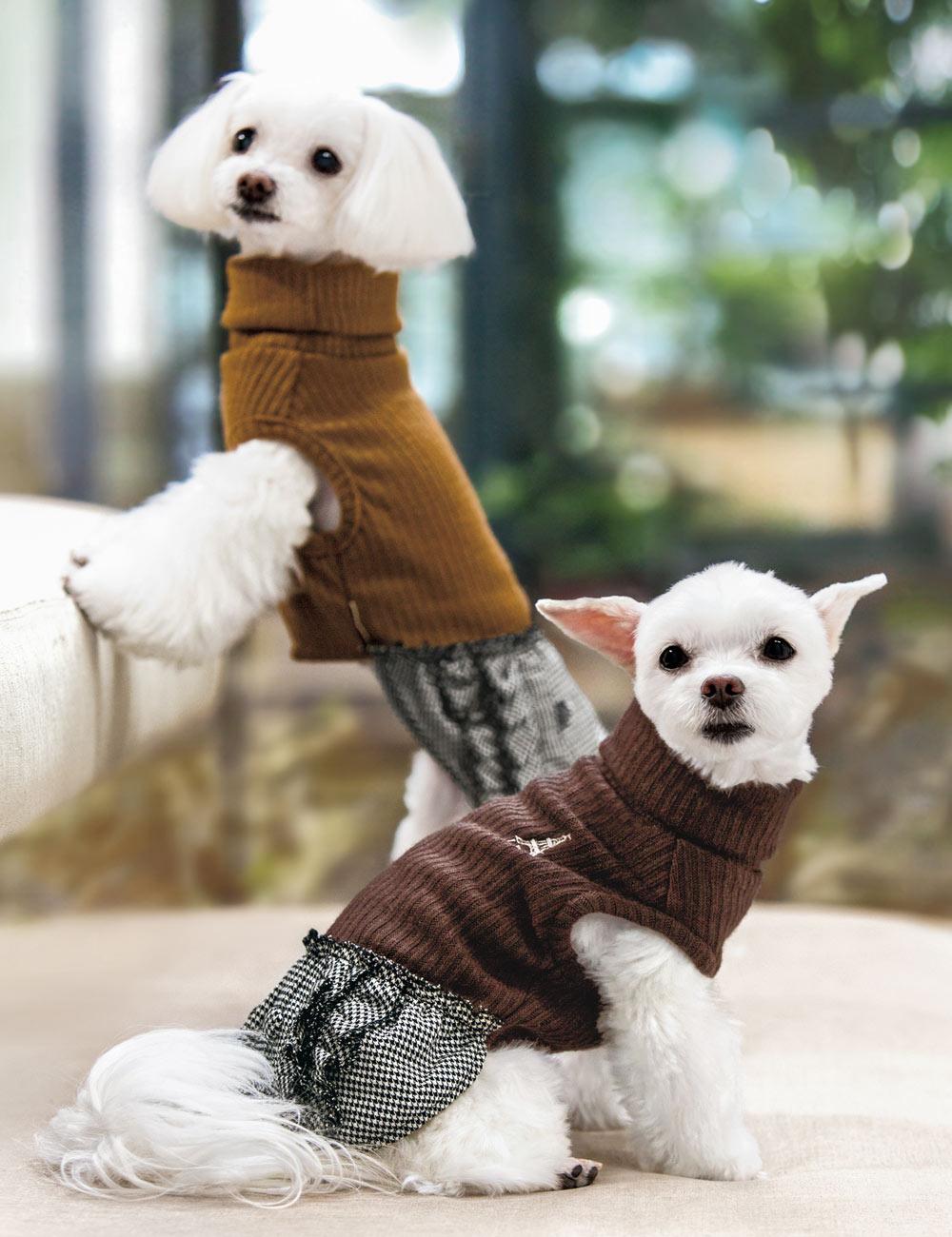 犬と生活 ショコラワンピース 【犬服 冬服 小型犬】