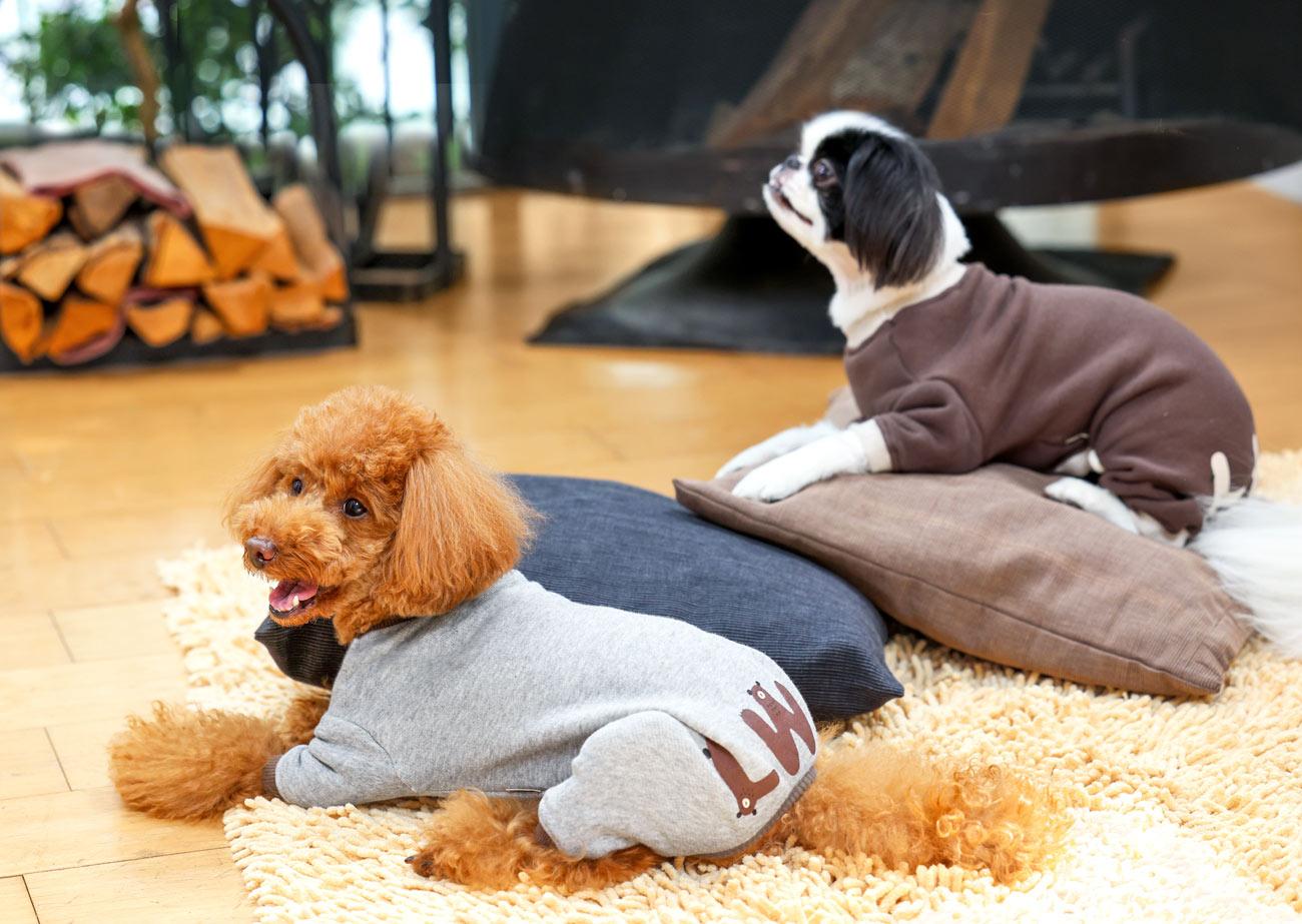 犬と生活 ウォームベアーロンパース 【犬服 秋冬服 小型犬】