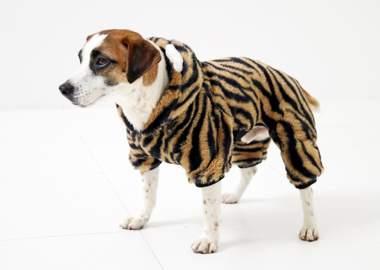 犬と生活 トラロンパース 【犬服 冬服 小型犬】