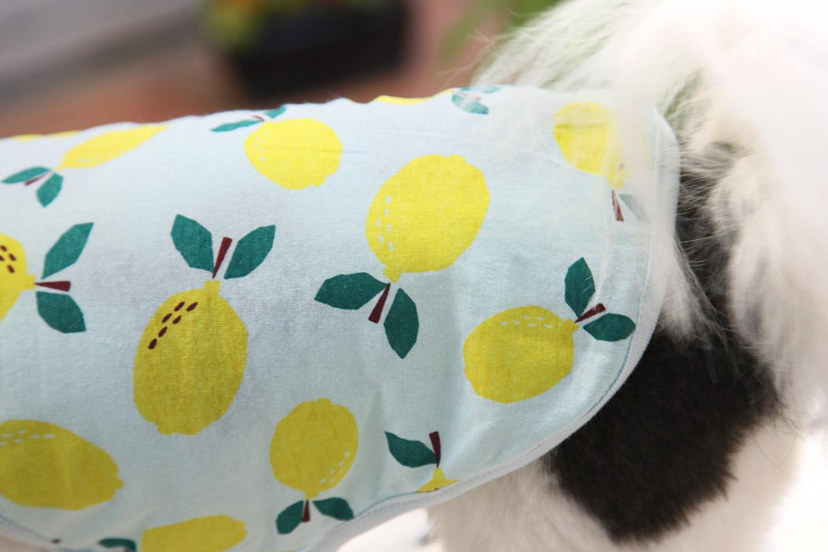 犬と生活 レモンタンク 【犬服 夏服 小型犬】