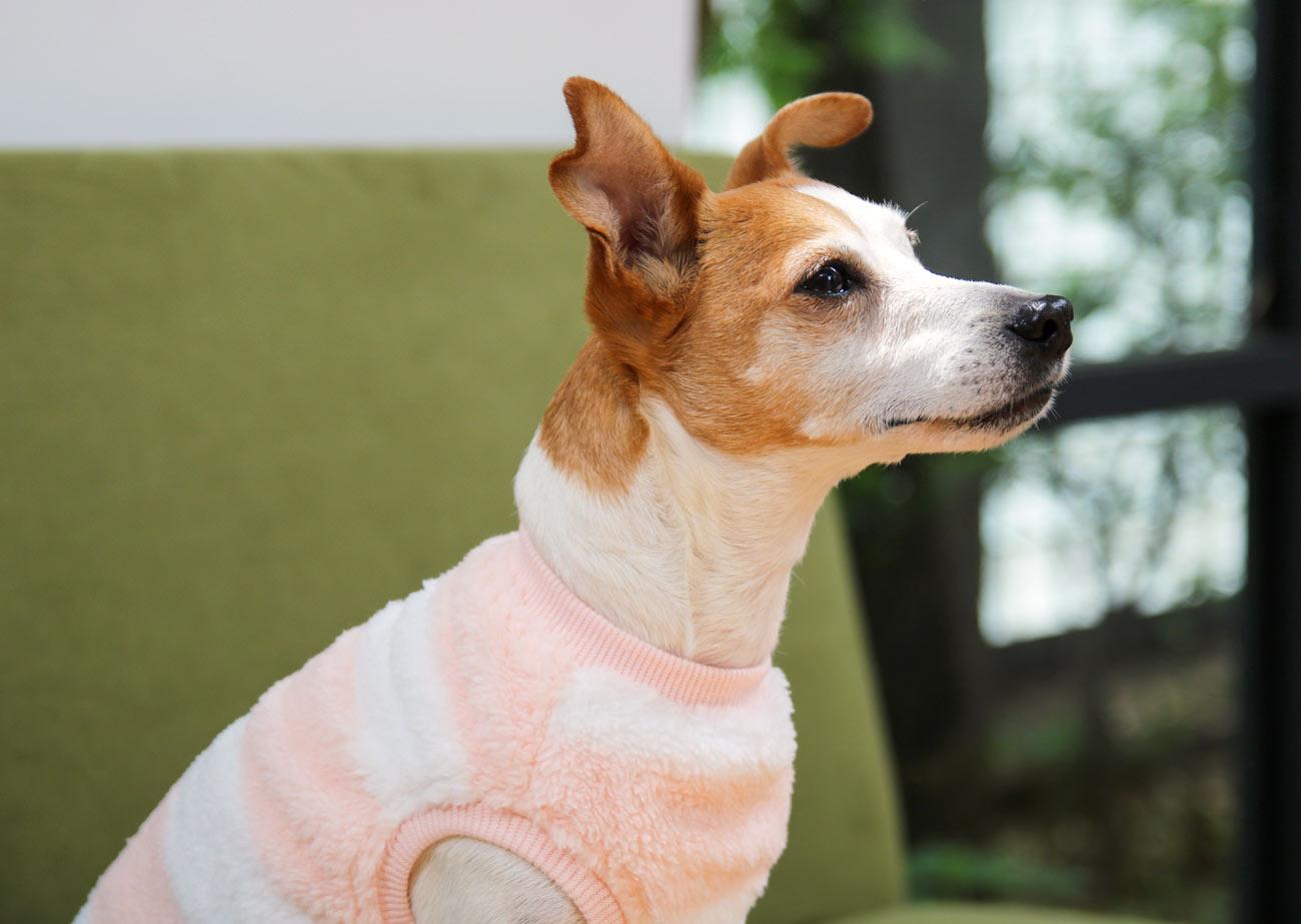 犬と生活 厚手ボアベスト 【犬服 冬服 小型犬】