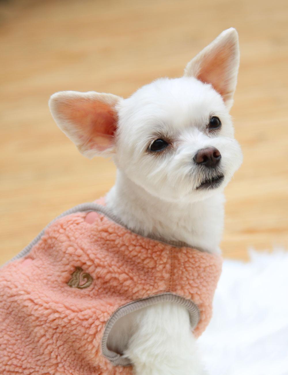 犬と生活 バックホックボアベスト 【犬服 冬服 小型犬】