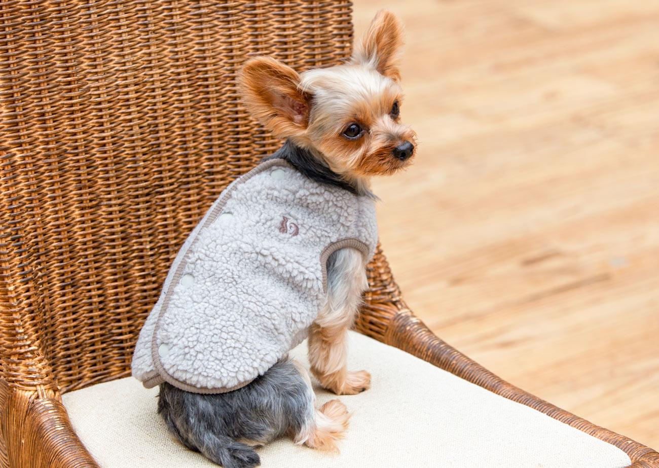 犬と生活 バックホックボアベスト 【老犬介護 犬服 冬服 小型犬】