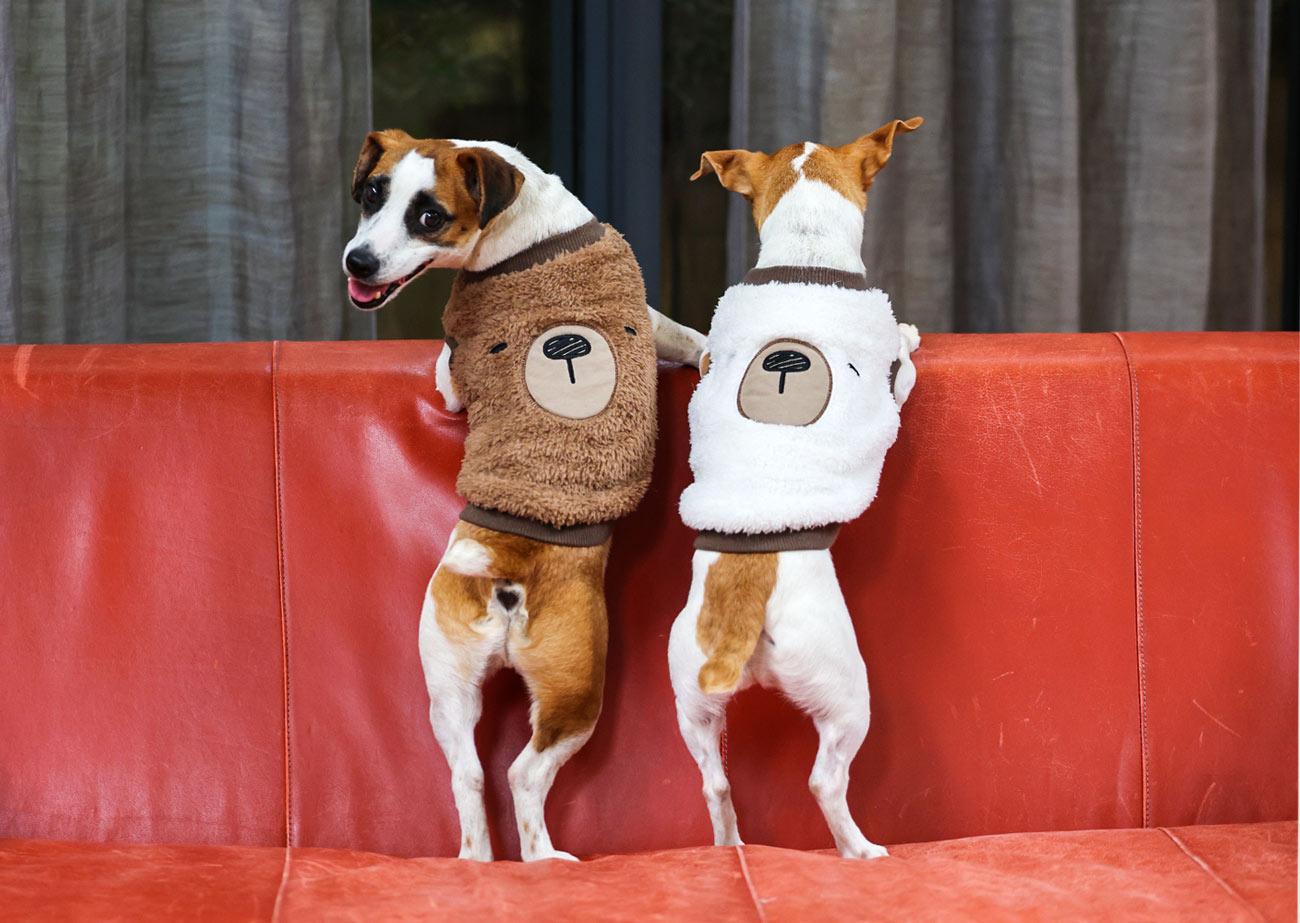 犬と生活 ボアフリースくまさん 【老犬介護 犬服 冬服 小型犬】