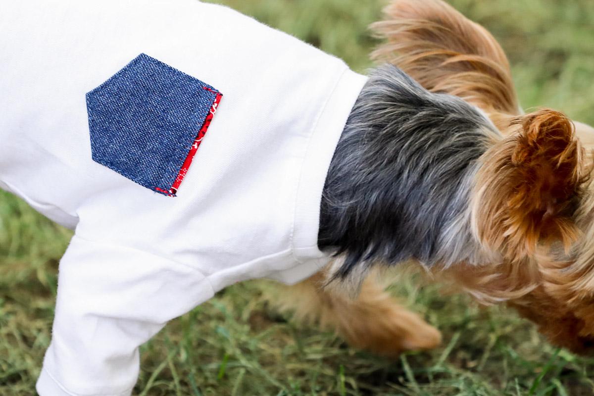 犬と生活 クレンゼTシャツ(抗菌・抗ウイルス機能) 【犬服 夏服 小型犬】