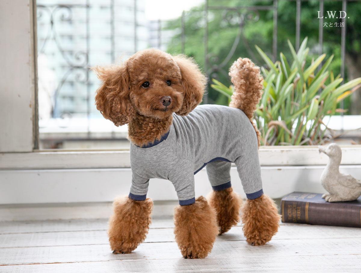 犬と生活 クレンゼスーツ 【犬服 小型犬 中型犬 病中病後 術後】