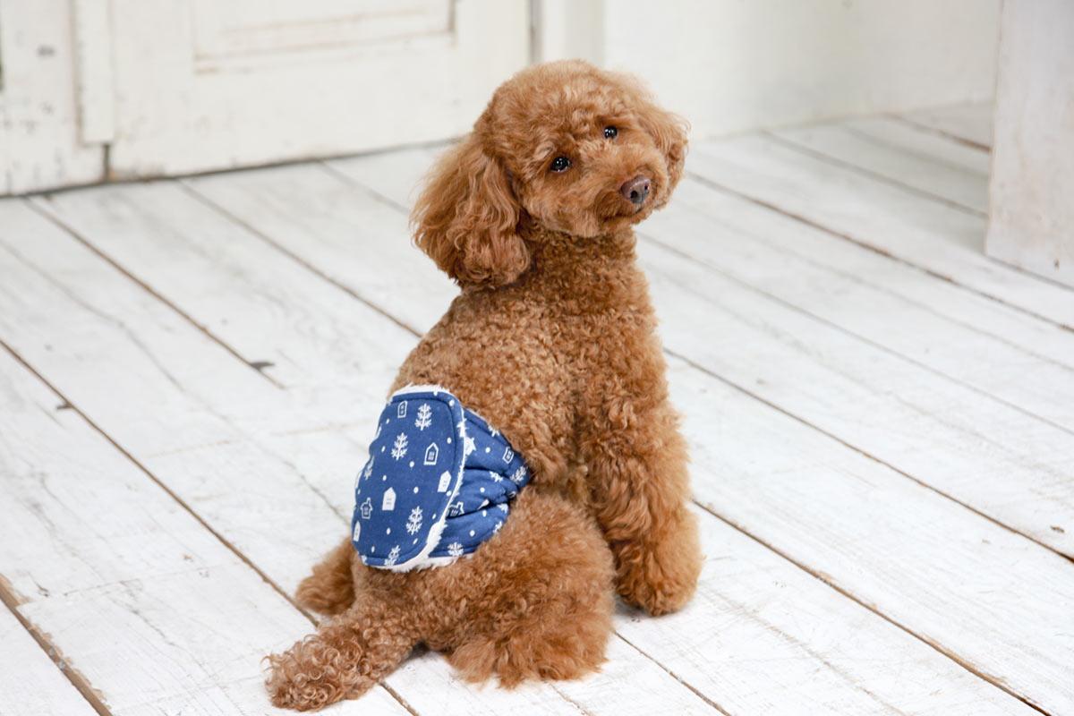 犬と生活 腹巻きサーモベルト スノウタウン 【老犬 体を温める 免疫力 体力】