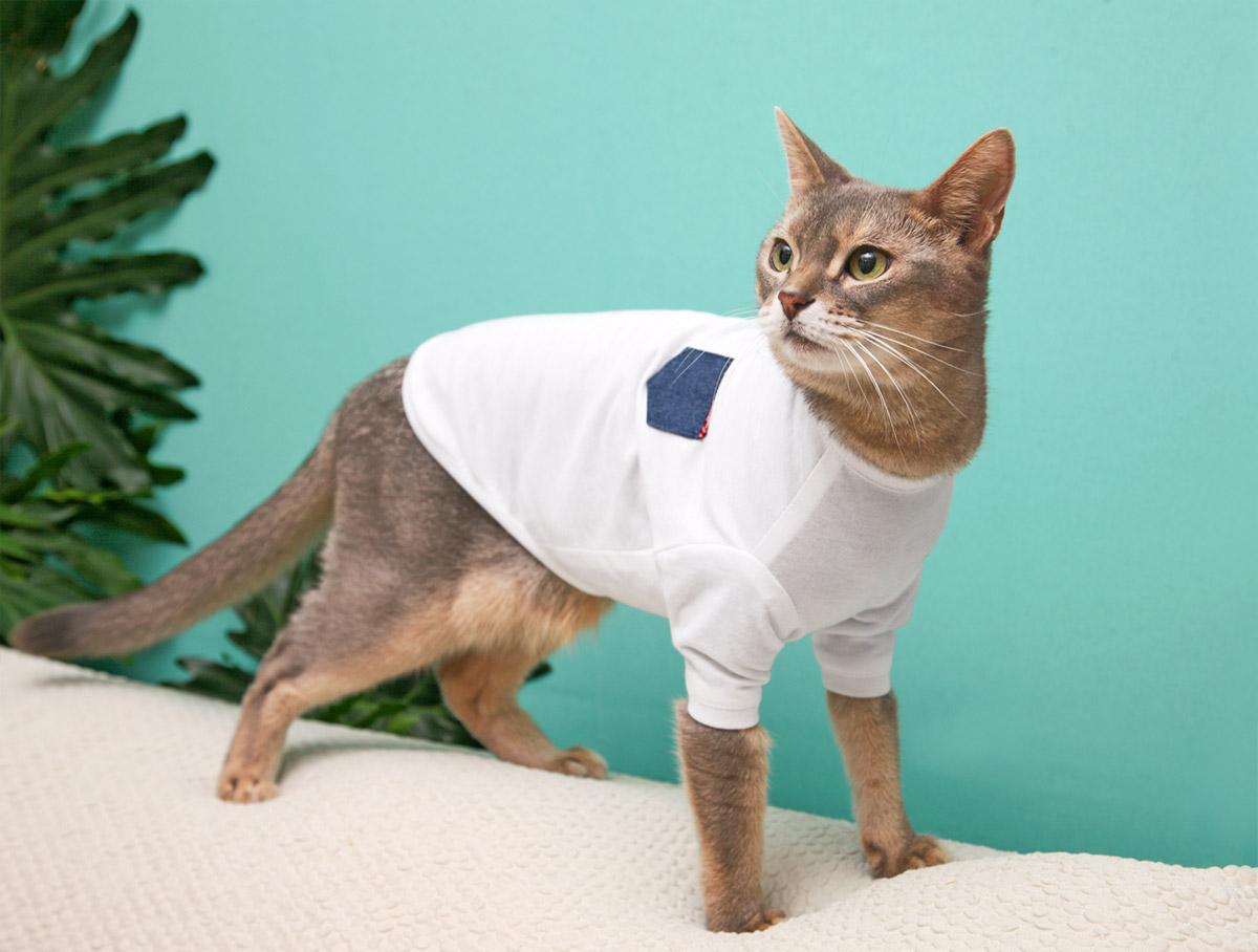 猫の暮らし クレンゼTシャツ キャット(抗菌・抗ウイルス機能) 【猫服】
