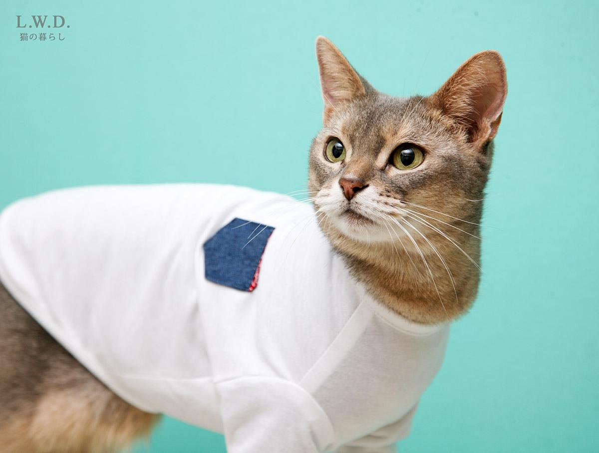 猫の暮らし クレンゼTシャツ キャット(抗菌・抗ウイルス機能) 【猫保護服,袖付き,皮膚炎,舐め壊し】