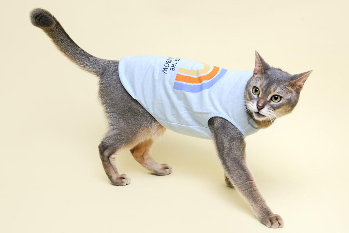 猫の暮らし クレンゼタンクレインボー キャット(抗菌・抗ウイルス機能) 【猫服】