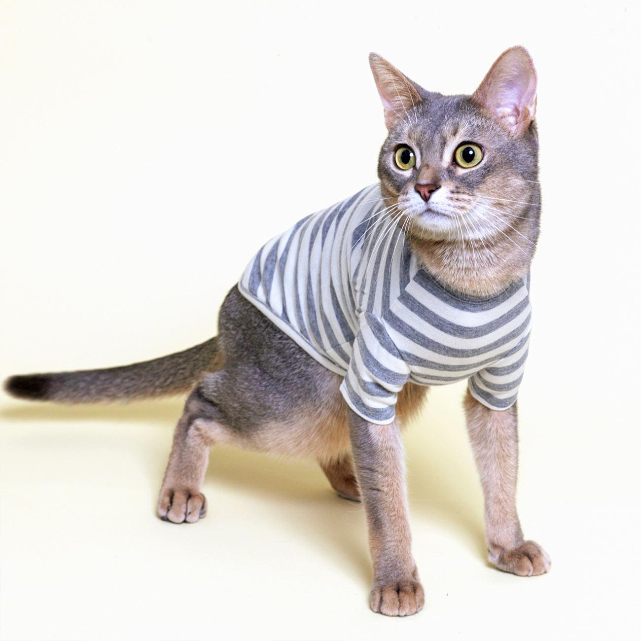 L.W.D. 猫の暮らし オーガニックネコTシャツ 【猫服 舐め防止 防寒 綿100%】