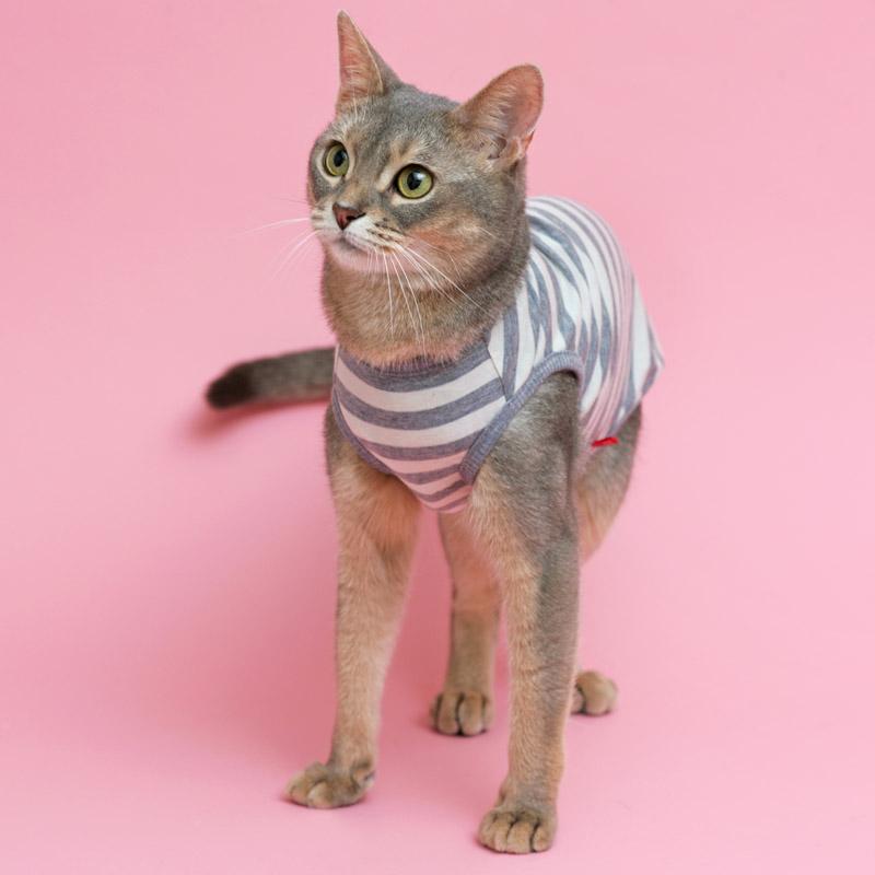 L.W.D. 猫の暮らし オーガニックネコタンク 【猫服 舐め防止 防寒 綿100%】