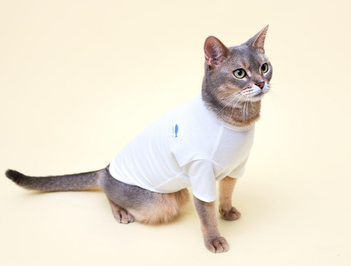 猫の暮らし プレーンオーガニックTキャット 【猫服】
