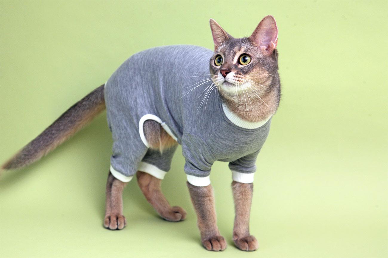 L.W.D. 猫の暮らし スーパーガードスーツキャット 【猫服 舐め防止 防寒 綿100%】