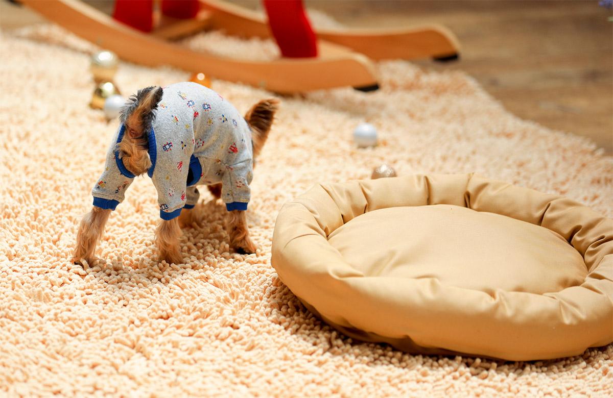 犬と生活 ロウカドラー クレンゼ 【抗菌 ベッド 洗える】
