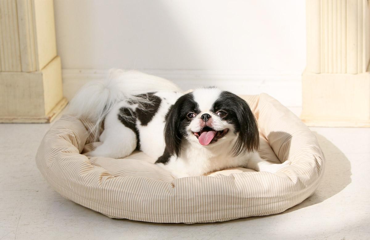 犬と生活 ロウカドラー ヒッコリー 【ベッド 洗える】